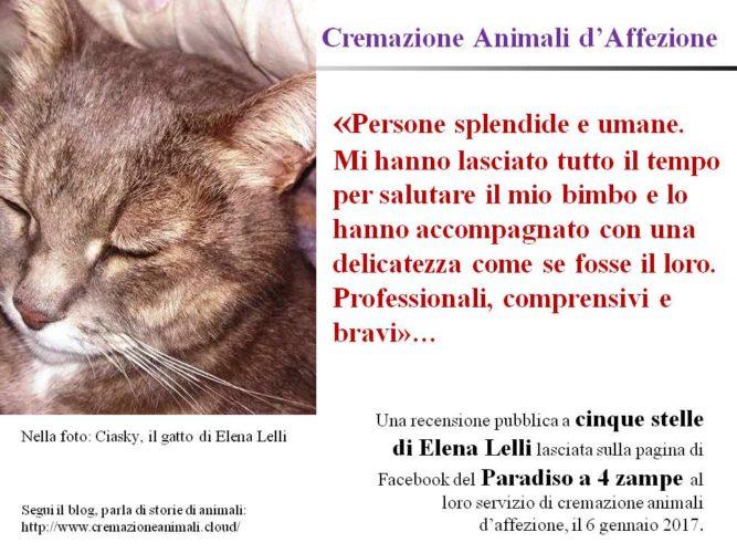 Cremazione Animali d'Affezione: la recensione a 5 stelle di Elena!