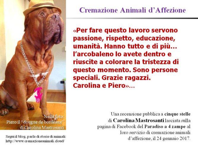 Cremazione Animali d'Affezione - la recensione di Carolina Mastrosanti al servizio di cremazione animali del Paradiso a 4 Zampe!