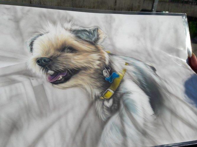 Winnie, lo Yorkshire di Luana Biggi (dal vivo e in disegno)!