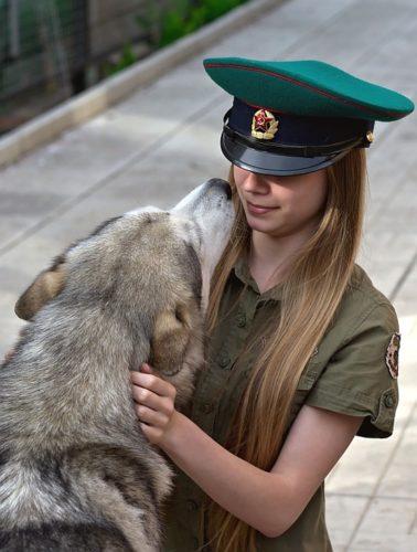 Sapevi che il cane non ama essere accarezzato in testa?
