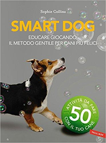 Educare giocando: far felice il nostro cane...