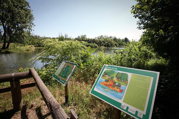 L'oasi naturalistica di Vanzago (Mi): il paradiso degli ornitologi!