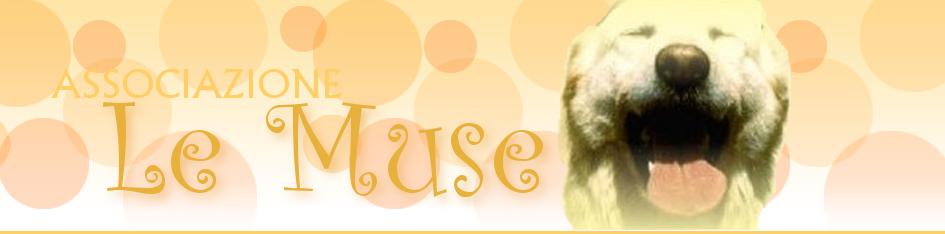Associazione Le Muse (Brescia): se entro 2 anni... !