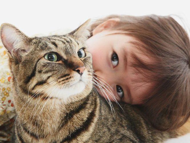 G come gatto e... gelosia!