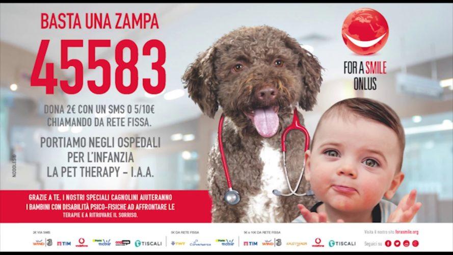 """Pet therapy: la Golden diventa """"Ambasciatrice del Sorriso""""!"""