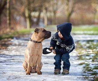 Il cane rinforza le difese immunitarie dei bambini!