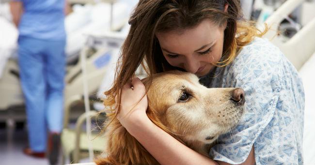 """Miracoli in corsia: paziente quasi in coma """"risponde"""" a un cane!"""