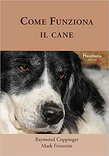 """Cane: lo conosciamo davvero? Come """"funziona"""" il nostro amico..."""