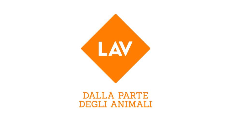 Petizione Lav per ridurre l'IVA su cibo per animali e prestazioni veterinarie!