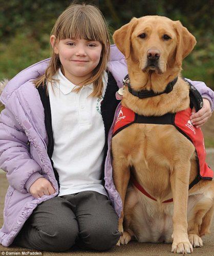 La storia di Rebecca e del labrador Shirley (che la salva dal diabete)!