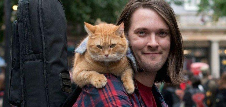 La storia di James e il suo gatto Bob, diventata un film!