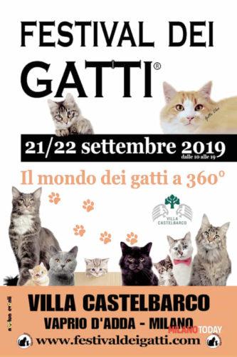 21/22 settembre 2019, Festival dei Gatti: Il mondo dei gatti a 360° (Milano)!