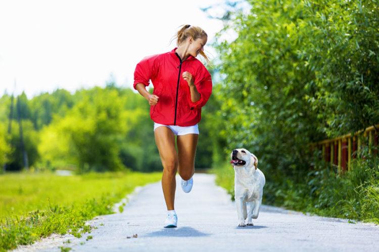 Mi alleno con il cane!