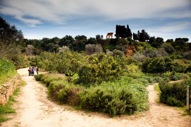 Agrigento: all'interno del Parco della Valle dei Templi, c'è il Giardino della Kolymbetra!
