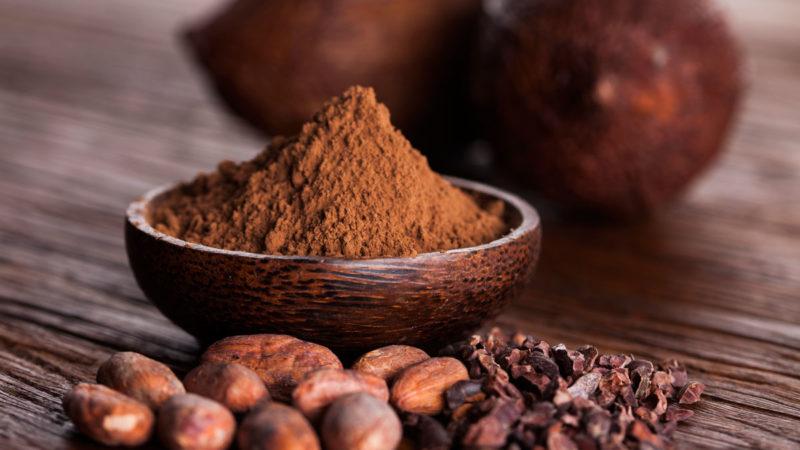 Il cacao è nocivo per cani e gatti?