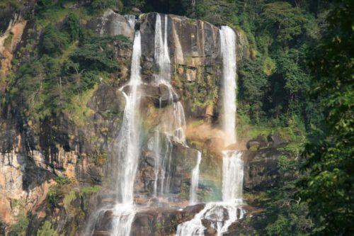 Parco monti Udzungwa, un paradiso di biodiversità!