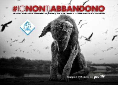 #IONONTIABBANDONO – LNDC e Prolife lanciano l'allarme abbandono!