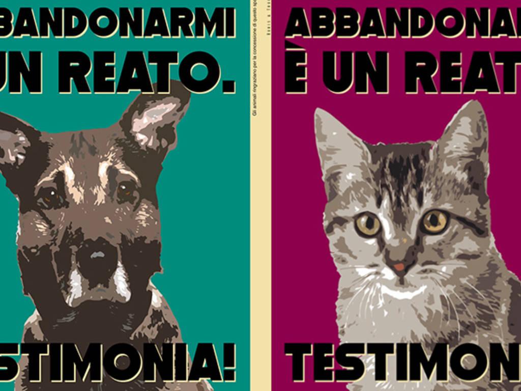 Ogni animale ha dei diritti!