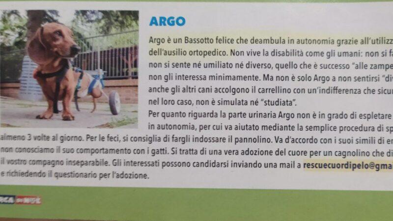 Argo ti aspetta!